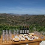 Wine Tasting Experiences in Andalucia